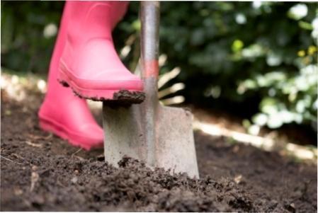 Навіщо перекопувати грунт восени, і коли краще не копати землю перед зимою