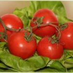 Які сорти помідор найурожайніші для вирощування в Україні