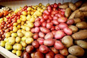 Способи зберігання картоплі вдома і в погребі