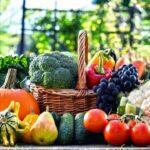 Які роботи потрібно проводити в саду і на городі в серпні - за місячним календарем