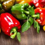Кращі сорти перців на 2021 рік: найсмачніші і врожайні сорти перцю для вирощування