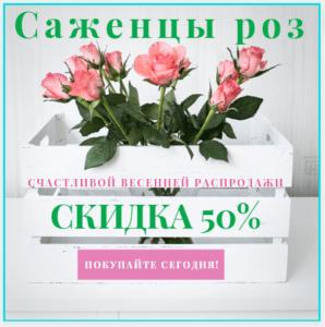 Самі врожайні сорти томатів для вирощування в Україні в 2021 році
