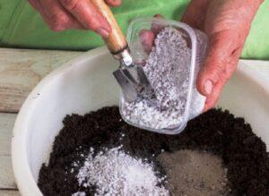 Готуємо грунт для посіву пекінської капусти